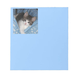 Kitty On Blue Notepad