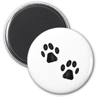 Kitty Paws Magnet