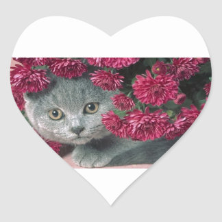 Kitty-Peek-A-Boo Sticker