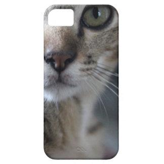 Kitty Phone Case