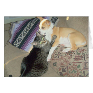 kitty puppy huggy greeting card