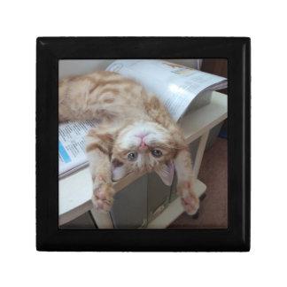 Kitty Relaxing Gift Box