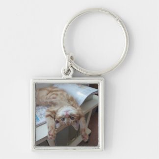 Kitty Relaxing Silver-Colored Square Key Ring