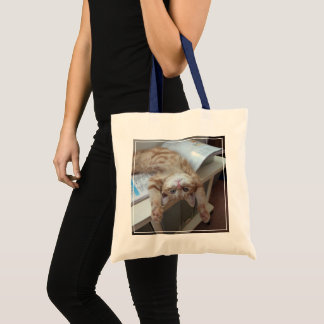 Kitty Relaxing Tote Bag