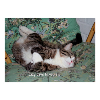Kitty s Lazy Days Poster