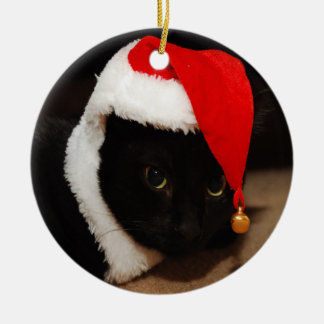Kitty Santa ornament