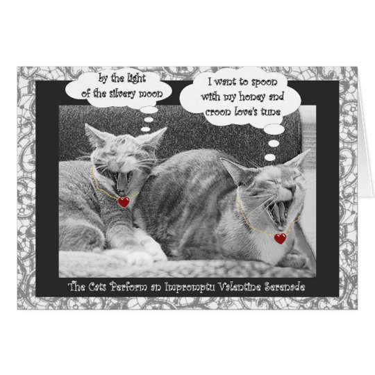 kitty serenade contemporary valentine card