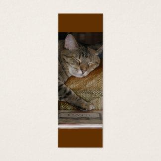 Kitty Sleep Profile Card