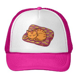 kitty sleeping mesh hats