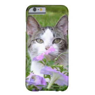 Kitty Smelling The Flowers iPhone 6 Case