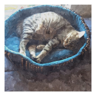 Kitty Takes a Nap, Watercolor Tabby Cat Sleeping Poster
