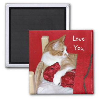 Kitty Teddy Bear Valentine Square Magnet
