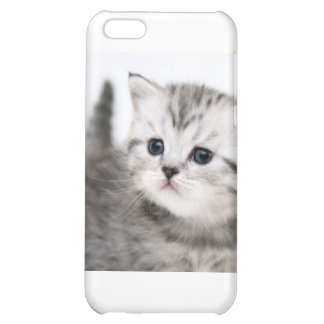kitty time iPhone 5C case