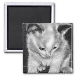Kitty toy kitten Magnet