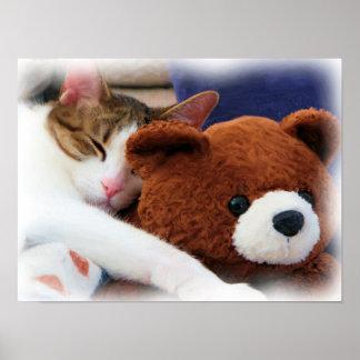 Kitty with Teddy Bear Print