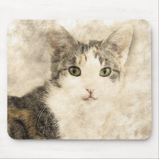 Kittys Full Attention | Abstract | Watercolor Mouse Mat