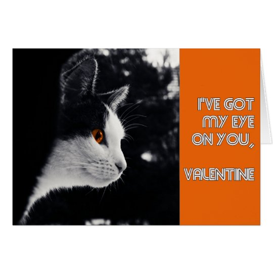kitty's got his eye on you modern valentine card