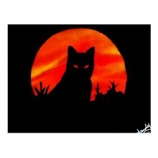 Kitty's Harvest Moon Postcard