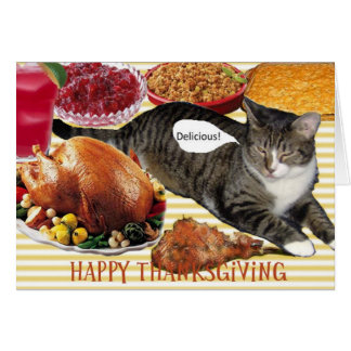 Kitty's Thanksgiving Card