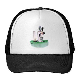 kiwi cricket batting lesson, tony fernandes cap
