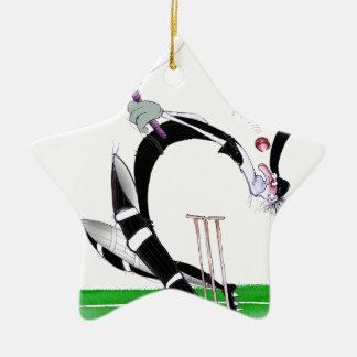 kiwi cricket eye on the ball, tony fernandes ceramic star decoration