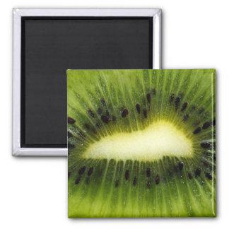 Kiwi Fruit Magnet