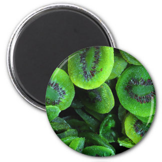 Kiwi Fruit Magnet