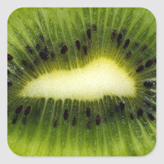 Kiwi Fruit Square Sticker
