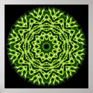 Kiwi Kaleidoscope Poster