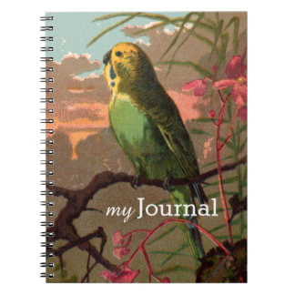 Kiwi the Parakeet Notebook