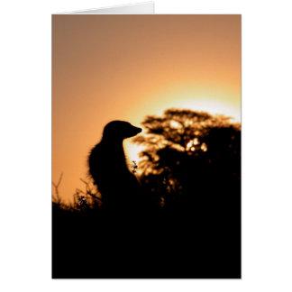 KMP Card 5 - Flava Flav sunset