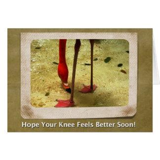 Knee Surgery Get Well Soon Pink Flamingo Card