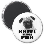 Kneel Before Pug Magnet