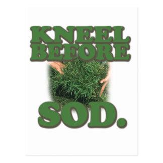Kneel Before Sod Postcard