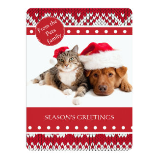 Knitted Xmas Announcement Card