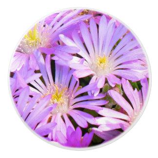 Knob with purple flowers close up