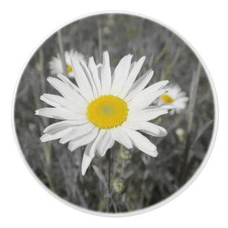 knob,yelloq , white summer blossom in grey ceramic knob