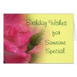 Knockout Rose & Bud 4397-customise Greeting Card