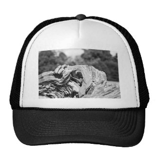 knotted wood` trucker hats