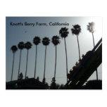 Knott's Berry Farm, California Postcard