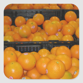 Knoxville zoo 029.JPG-tomato fruit for kitchen ect Square Sticker