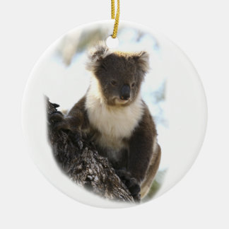 Koala 2 christmas ornament