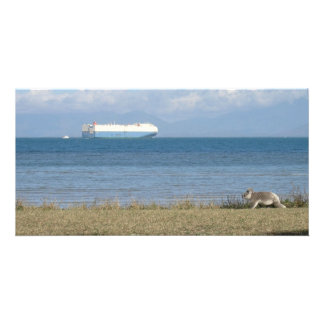 Koala and container ship photo card template