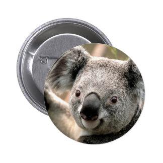 Koala Pins