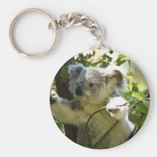 koala basic round button key ring