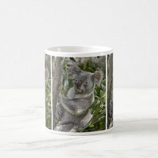 Koala Bear 2 Mug