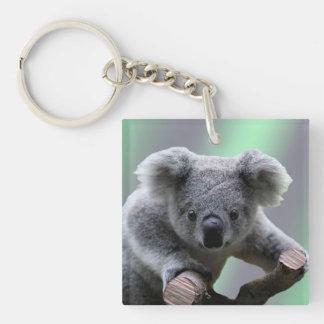 Koala Bear Double-Sided Square Acrylic Key Ring