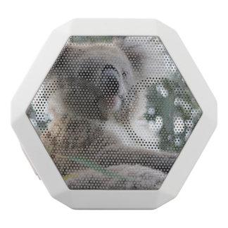 Koala Bear Facts White Boombot Rex Bluetooth Speaker