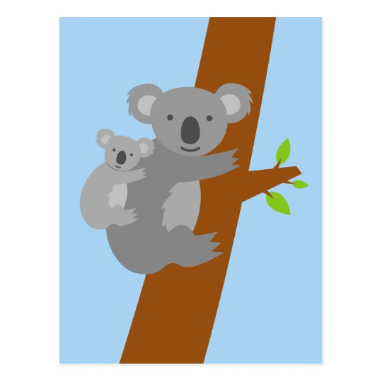 Koala bear illustration postcards