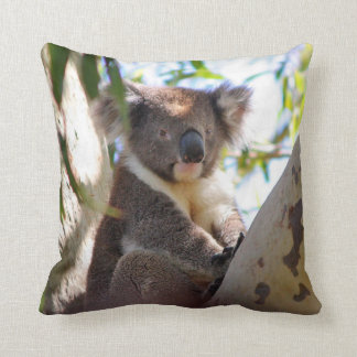 Koala Bear in Tree Decorative Animal Throw Pillow
